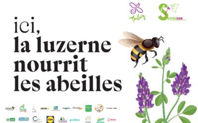 Cérèsia engagé auprès de l'association Symbiose dans le projet Apiluz pour la préservation de la biodiversité